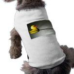Flotación de goma del pato camiseta de mascota