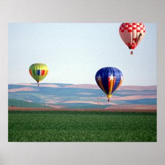 Flotador colorido de los globos del aire caliente  impresiones