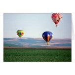 Flotador colorido de los globos del aire caliente  tarjeton