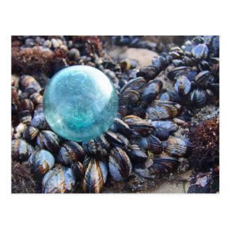 Flotador de cristal en mejillones azules tarjetas postales