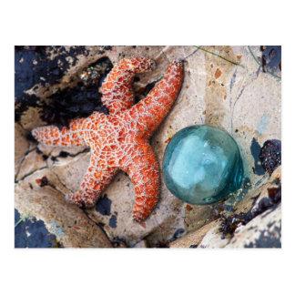 Flotador de cristal y estrella anaranjada postales