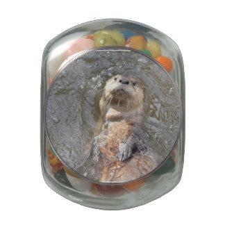 Flotador de la parte posterior de la nutria jarras de cristal