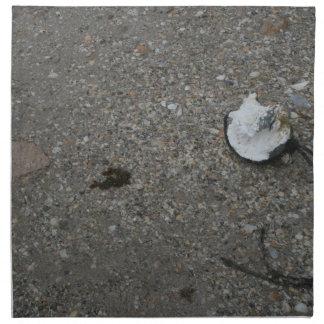 Flotador neto quebrado en la playa servilletas