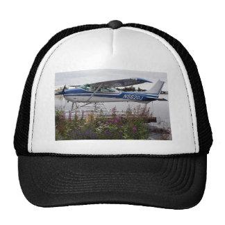 Flote el avión 10, capilla del lago, Anchorage, Al Gorro