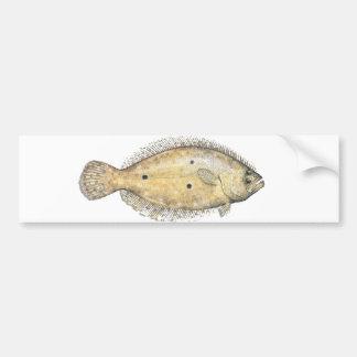 Flounder Car Bumper Sticker