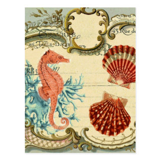flourish french modern vintage seashell seahorse postcard