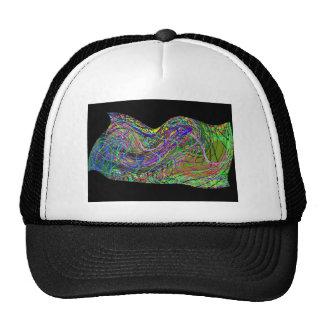 Flow of life colors trucker hat