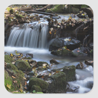 Flow Water through the jungle Square Sticker