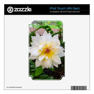 flower17 decal for iPod touch 4G