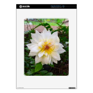 flower17 skins for the iPad