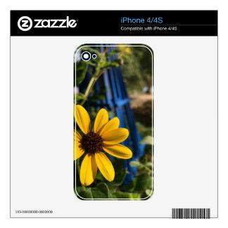 flower1.jpg skin for iPhone 4