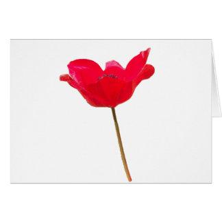 Flower23 Card