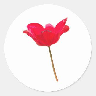 Flower23 Classic Round Sticker