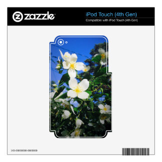 flower2 iPod touch 4G skins