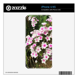 flower8 skin for iPhone 4