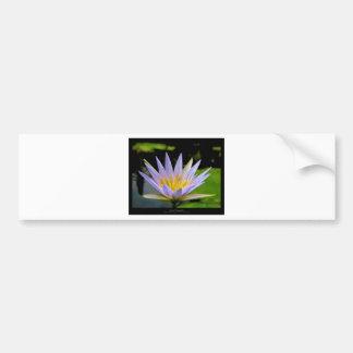 Flower 026 Blue Water Lily Bumper Sticker