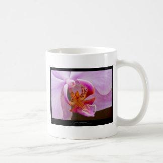 Flower 034 Pink orchid Mug