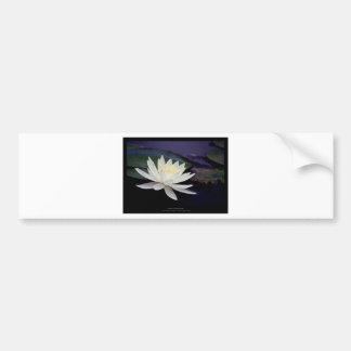 Flower 039 White Water Lily Bumper Sticker