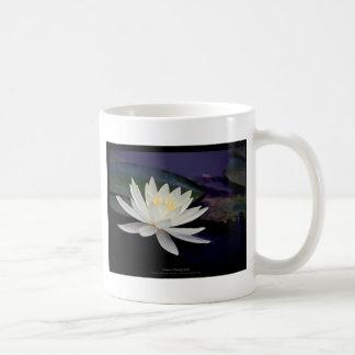 Flower 039 White Water Lily Coffee Mug