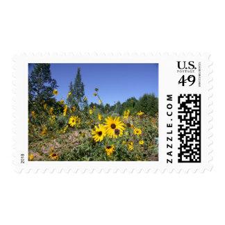 flower_03 stamp
