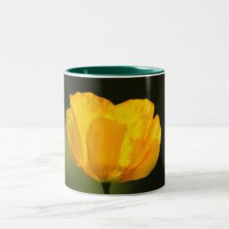 Flower  11 Two-Tone coffee mug