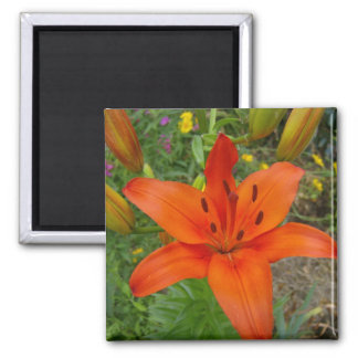 Flower 1 2 inch square magnet
