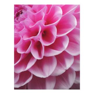 FLOWER 1 LETTERHEAD