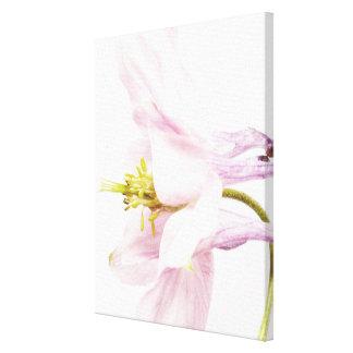 Flower 1 Pastel colors canvas print