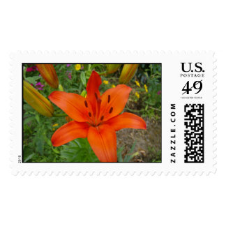 Flower 1 stamps