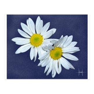 Flower 1 postcard