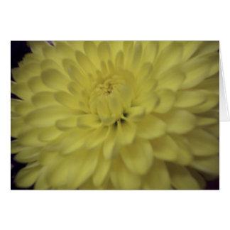 Flower 23 Card