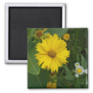 Flower 2 2 inch square magnet