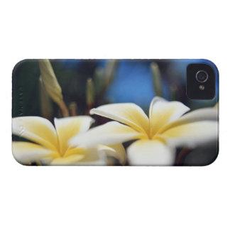 Flower 2 iPhone 4 case