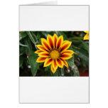Flower 2 greeting card