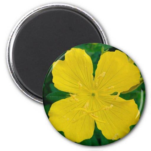 flower 2 inch round magnet
