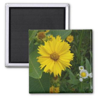 Flower 2 magnets