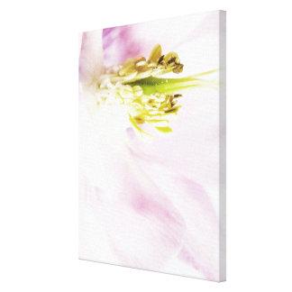 Flower 2 Pastel colors canvas print