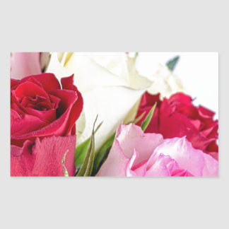 flower-316621 flower flowers rose love red pink ro stickers