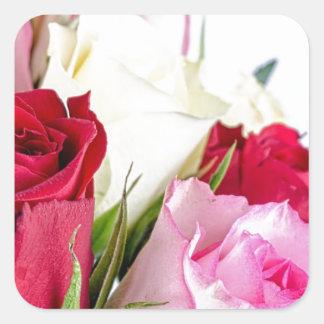 flower-316621 flower flowers rose love red pink ro square sticker