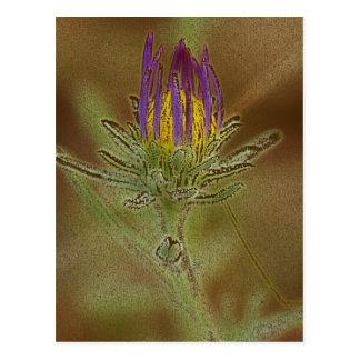 Flower 59 postcard