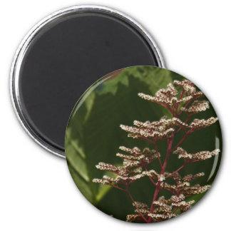 Flower  8 2 inch round magnet
