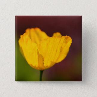 Flower  9 pinback button