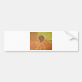 Flower Abstract Bumper Stickers