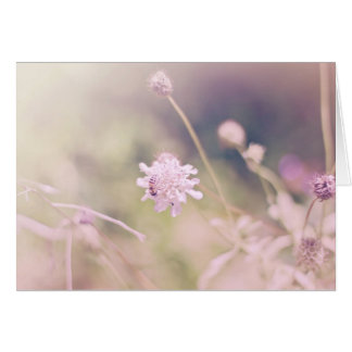 Flower and Bee Pastel Photograph Card