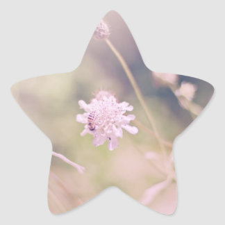 Flower and Bee Pastel Photograph Star Sticker