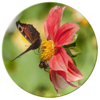 Flower and Butterfly plate