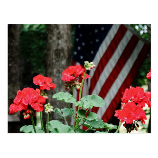Flower and flag Red white and blue Postcard