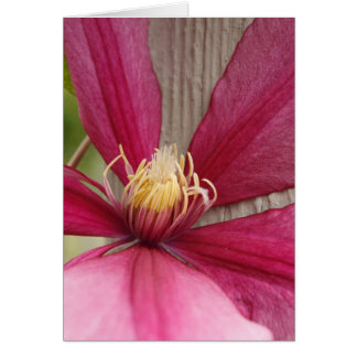 Flower and Stamen Card
