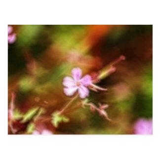 Flower Art Postcard