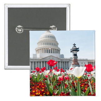 Flower bed in springtime in Washington, D.C. Pinback Button